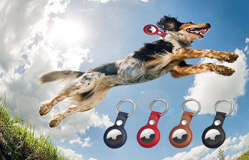 AirTags Protective Cases